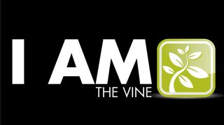 The-Vine